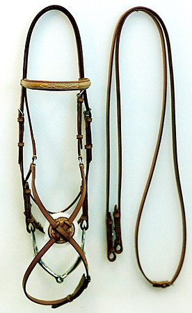 Flash Bridle