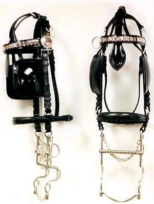 Coach Harness Bridles