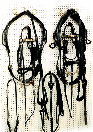 Harness Bridles